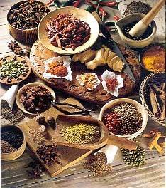 plantas medicinais3